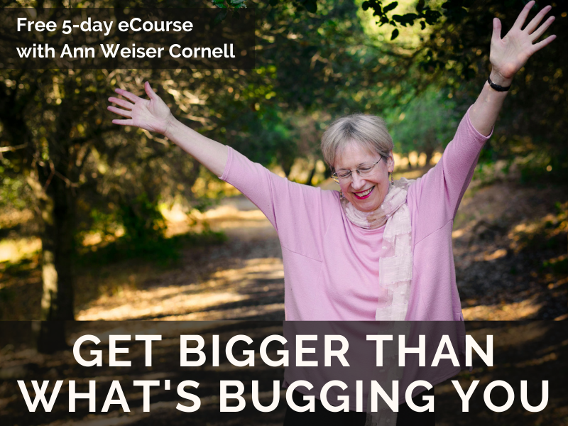 Click here for our free E-course?